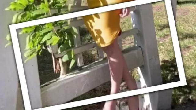 南 杏里-楽艶-の動画